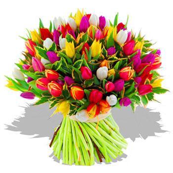 Ein Bild von einem Blumenstrauss mit farbigen Tulpen.